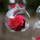 La boule en verre ouverte 8cm (par 12)
