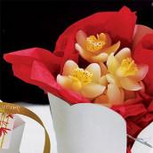 Les 28 bougies orchidée blanche et jaune