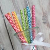 Les 25 pailles motif chevron (9 coloris)