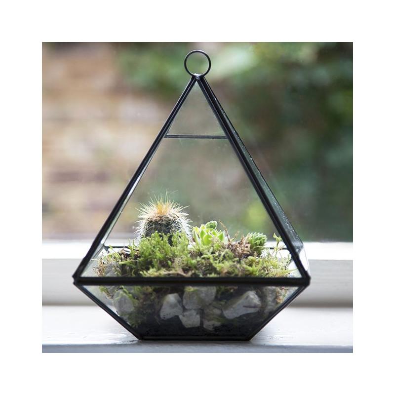 terrarium pyramide en centre de table. Black Bedroom Furniture Sets. Home Design Ideas