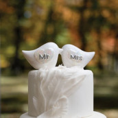 La figurine oiseaux Mr & mrs