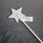 Les baguettes magiques étoile argent x6