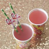 Les pailles flamand rose