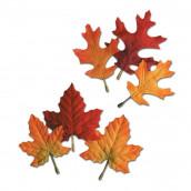 Les 12 feuilles d'automnes
