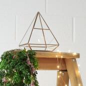 Le terrarium pyramidal doré