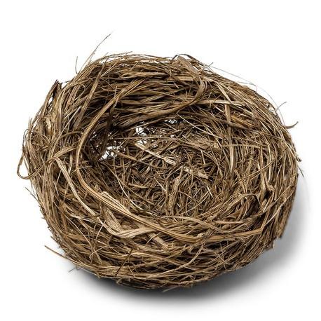 Le nid naturel 8cm