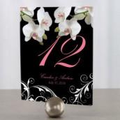 Les 12 numéros de table orchidée