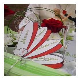 La décoration d'Indomari : la nature (vert anis et rouge)