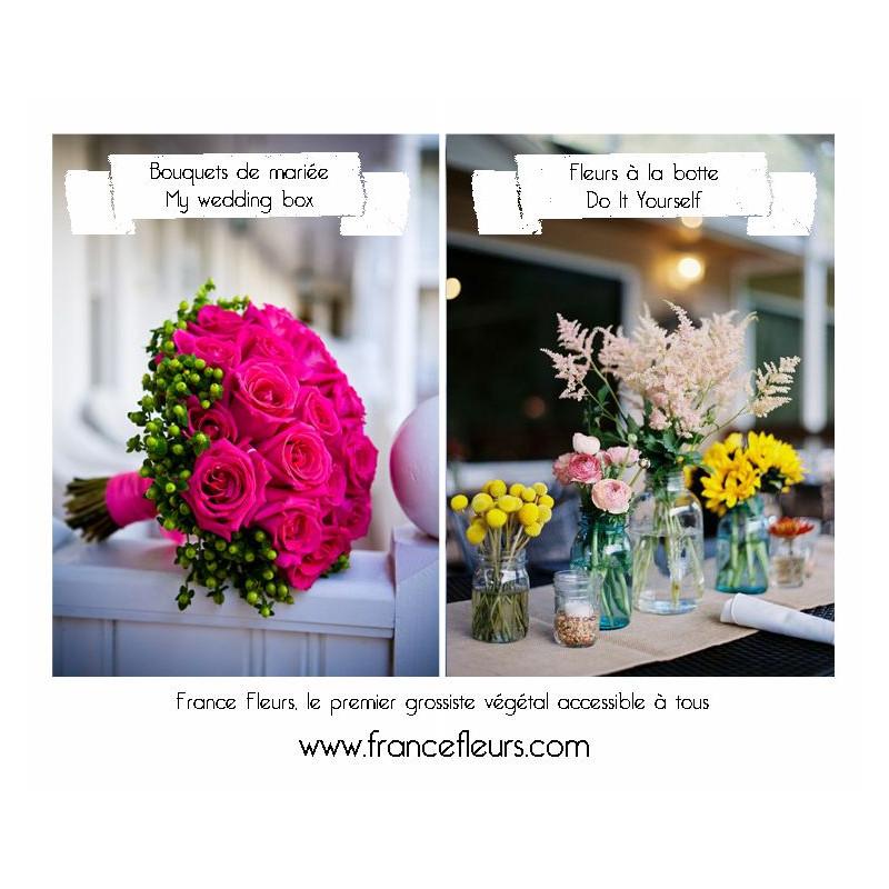 Quelques liens utiles - Grossiste decoration mariage ...
