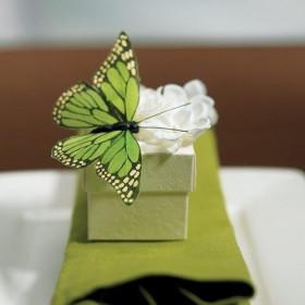 Les 12 papillons en plume