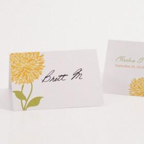 Le carton marque place zinnia (par 6)