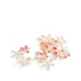 Les pétales de fleur de cerisier