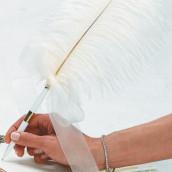 Le stylo plume
