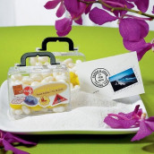 Echantillon boîte valise