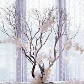 La branche artificielle de manzanita