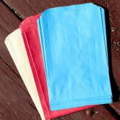 Les 25 sacs en papier enveloppe (13 coloris)
