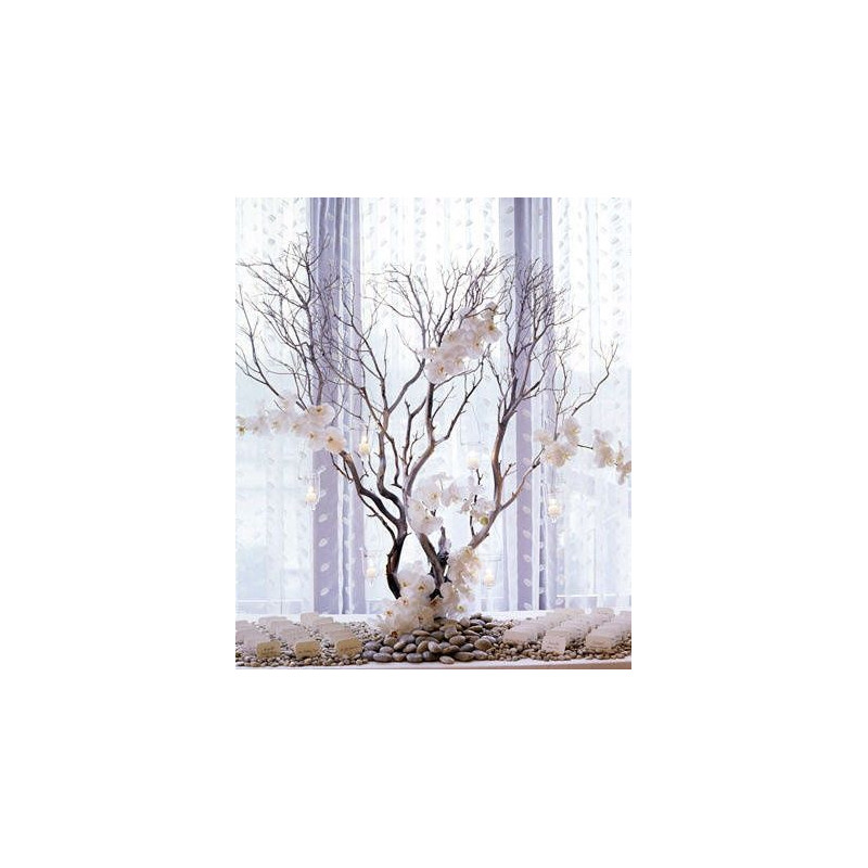 acheter branche arbre perfect collection haie des quatre saisons arbustes extra branches with. Black Bedroom Furniture Sets. Home Design Ideas