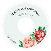 Les 6 disques pour cd thé rose