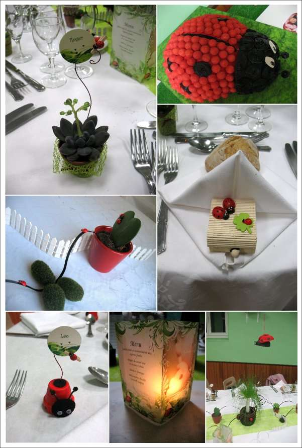 Decoration bapteme th me coccinelle for Idee deco theme jardin