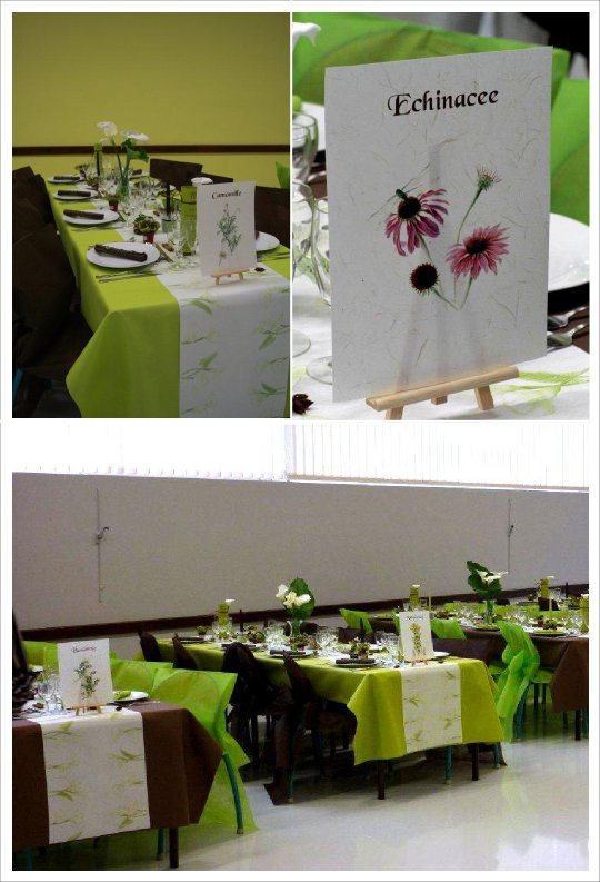 decoration_mariage_vert_anis_chocolat_plantes_medicinales