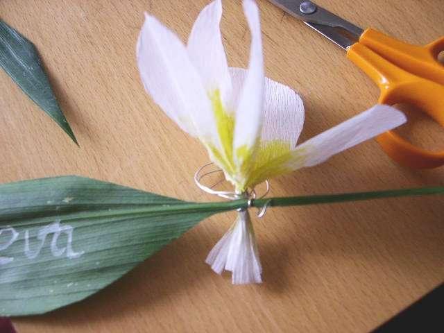 réalisation marque place porte nom fleur de frangipanier thème exotique îles explication mode d'emploi tutoriel fiche technique loisirs créatifs bricolage faire soi même papier crépon