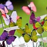 mariage theme papillon